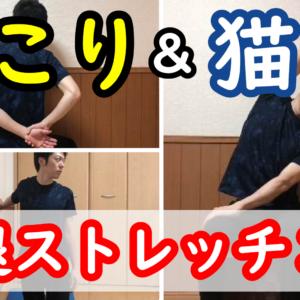 【ガンコな肩コリ】【猫背】猫背×肩こり首こり撃退ストレッチ3選! 肩こり首こりがラクになるストレッチメニュー